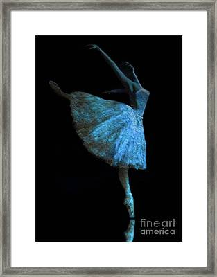 White Swan Framed Print by Jose Luis Reyes