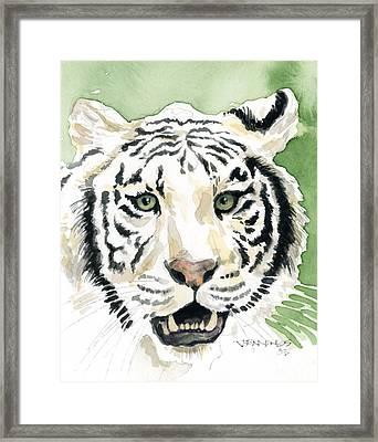 White Tiger Framed Print by Mark Jennings