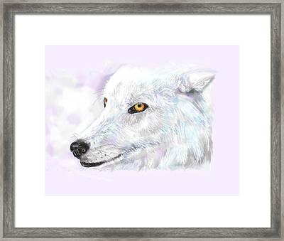 White Wolf Framed Print by Lakota Phillips