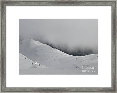 Whiteout Whistler Framed Print by Don F  Bradford