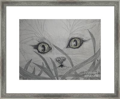 Who Are You Framed Print by Nancy Rucker