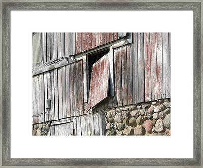 Who Let The Cow Out Framed Print by Michelle Shull