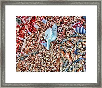 Who Will Buy Framed Print by Anne Ferguson