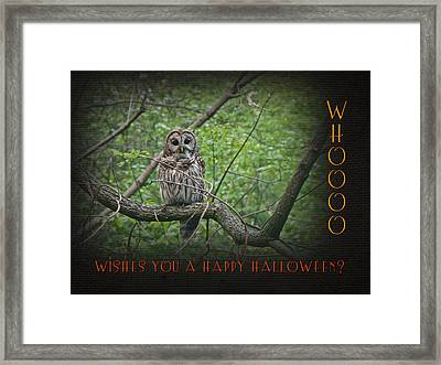 Whoooo Wishes  You A Happy Halloween - Greeting Card - Owl Framed Print by Mother Nature