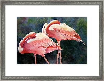Who's Peek'n - Flamingos Framed Print by Roxanne Tobaison