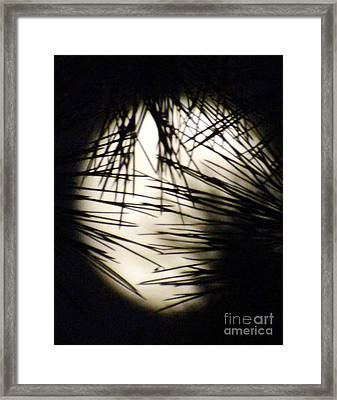 Wicked Moon Framed Print by Gary Brandes