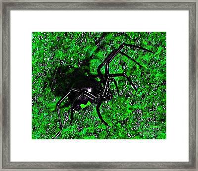 Wicked Widow - Green Framed Print by Al Powell Photography USA