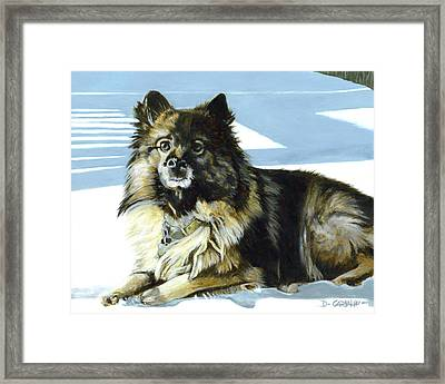 Wickett Framed Print