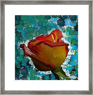 Wild And Crazy Rose Bud Framed Print by Debbie Portwood