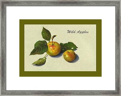 Wild Apples And Leaves Framed Print by Joyce Geleynse