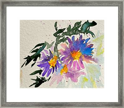 Wild Asters Framed Print by Beverley Harper Tinsley