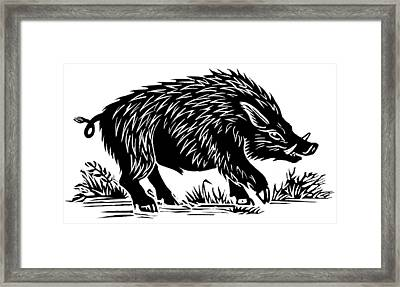 Wild Boar, Woodcut Framed Print by Gary Hincks