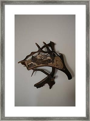 Wild Boars Running Framed Print by Banucu Ioan