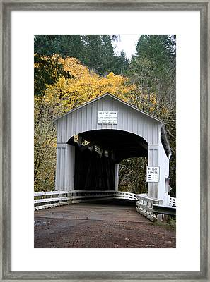 Wild Cat Bridge  Framed Print by Mary Gaines