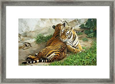 Wild Content Framed Print