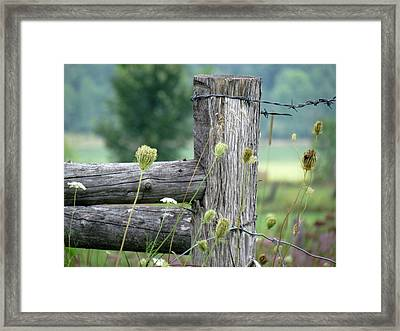 Framed Print featuring the photograph Wild Country Style by France Laliberte