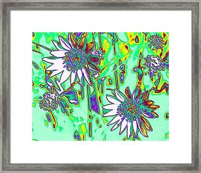 Wild Daisies Framed Print by Denise Oldridge