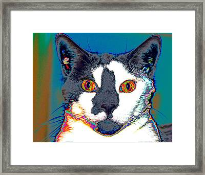 Wild Eyes Framed Print