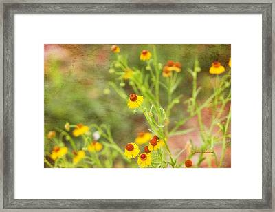 Framed Print featuring the photograph Wild Flowers by Joan Bertucci