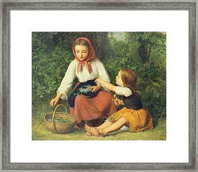 Wild Flowers Framed Print by William Charles Thomas Dobson
