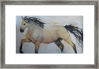 Wild Horse 1 2012 Framed Print