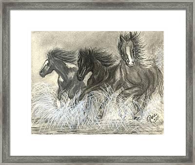 Wild Horses Run Framed Print by Gina Cordova