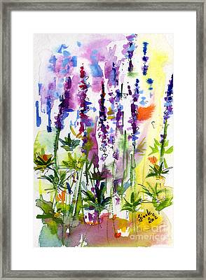 Wild Lupines Watercolor By Ginette Framed Print by Ginette Callaway