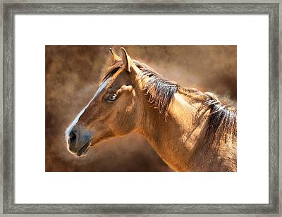 Framed Print featuring the digital art Wild Mustang by Mary Almond