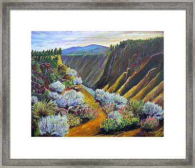 Wild Rivers New Mexico Framed Print by Mark Malone