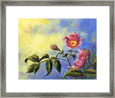 Wild Rose Framed Print by Kurt Jacobson