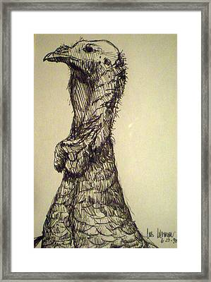 Wild Turkey Framed Print