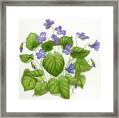Wild Violets Framed Print by Becky Yates