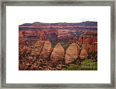 Colorado National Monument  Framed Print by Patricia Kertson