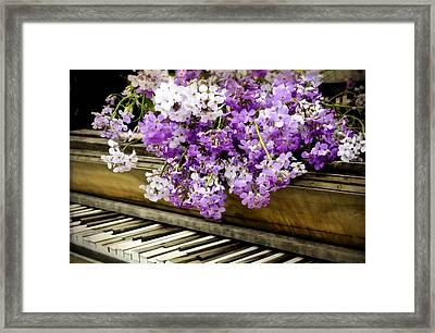 Wildflower Music Framed Print by Kathy Jennings