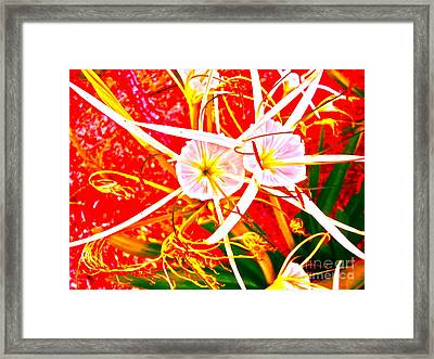 Wildflower Sea Framed Print by Chuck Taylor