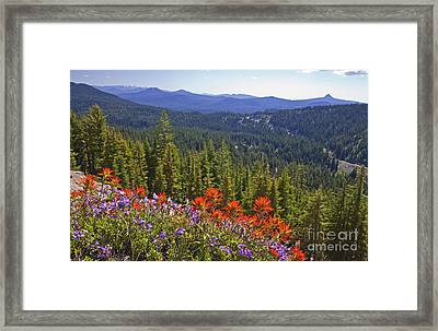 Wildflowers And Mountaintop View Framed Print by Ellen Thane and Photo Researchers