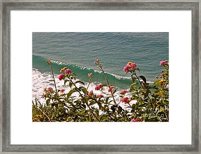 Framed Print featuring the photograph Wildflowers And Waves by Johanne Peale
