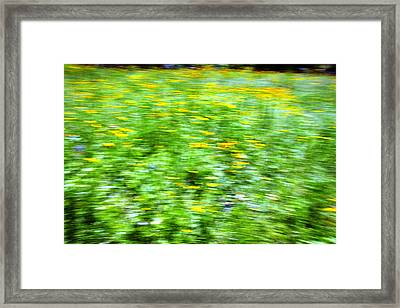 Wildflowers And Wind 2 Framed Print by Skip Nall