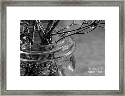 Framed Print featuring the photograph Wildflowers by Jan Piller