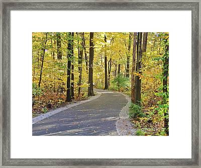 Wildwood Path In Fall Framed Print
