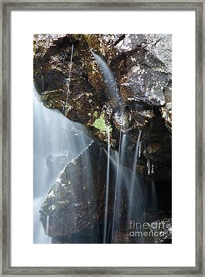 Willey Brook - White Mountains New Hampshire  Framed Print by Erin Paul Donovan