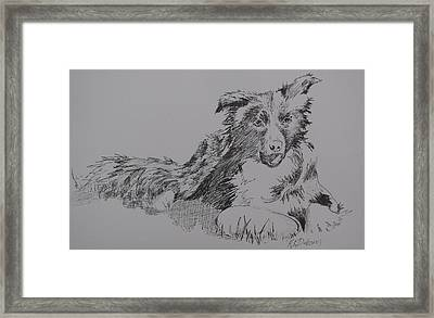 Willow And Frisbee Framed Print by Ramona Kraemer-Dobson