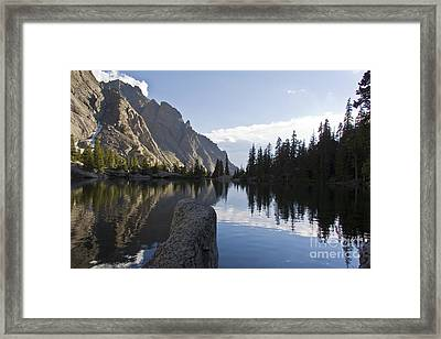 Willow Lake Whispering Framed Print