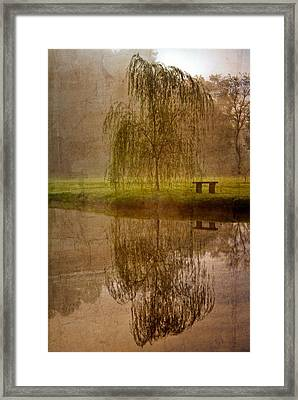 Willow On The Pond Framed Print by Debra and Dave Vanderlaan