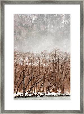 Willow Trees In Winter At Kamikochi Framed Print by Skye Hohmann