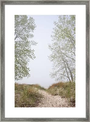 Wilmette Park Evanston Illinois Framed Print