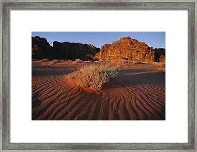 Wind Makes Waves In The Sand Framed Print by Annie Griffiths