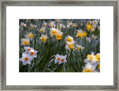 Wind Framed Print by Ron Smith