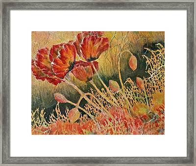 Windblown Poppies Framed Print by Carolyn Rosenberger