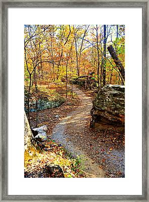 Winding Trail Framed Print by Marty Koch